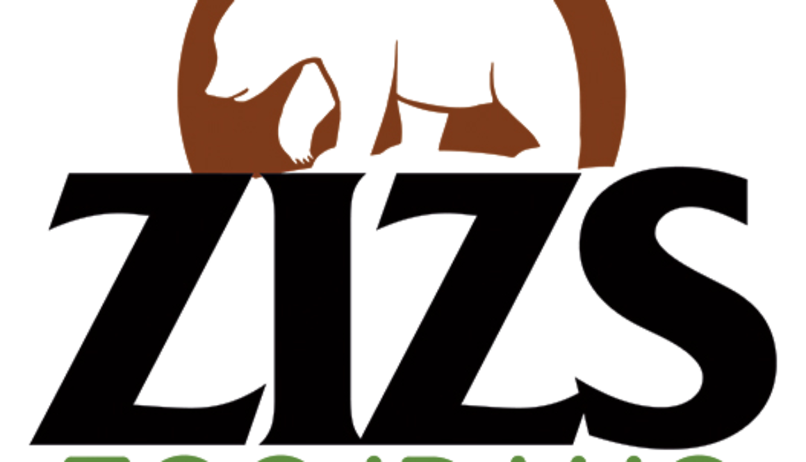 ZIZS Graphic Identity - PNG